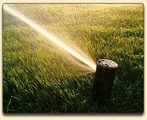 Traverse City, Michigan Irrigation and Sprinkler System Installation and Repair